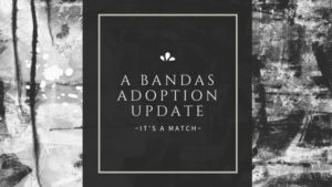How to match in an adoption